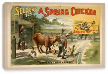 Искусство, Selden's Funny Farce, A Spring Chicken