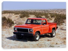Ford, Ford F-100 Flareside Pickup '1978