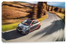 Forfour, Smart Forfour (2014)
