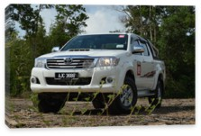 Hilux, Toyota Hilux