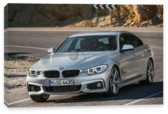 4 Series Gran Coupe, BMW 4 Series Gran Coupe (арт. am1502)