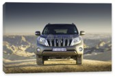 Land Cruiser Prado, Toyota Land Cruiser Prado (арт. am2607)