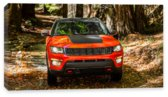 Compass, Jeep Compass (2017		)
