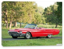 Ford, Ford Thunderbird Convertible '1965