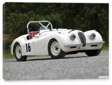 Jaguar, Jaguar XK120 Competition Roadster '1950