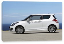 Swift 3D, Suzuki Swift 3D
