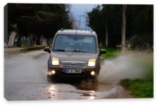 Tourneo Connect, Ford Tourneo Connect (арт. am1919)