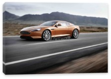 DB9 Coupe, Aston Martin DB9 Coupe (арт. am1019)
