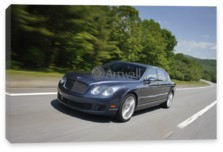 Continental Flying Spur, Bentley Continental Flying Spur (арт. am1419)