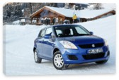 Swift 3D, Suzuki Swift 3D (арт. am2523)