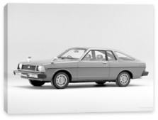 Nissan, Nissan Sunny Coupe (B310) '1979-81
