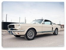 Shelby, Shelby GT350 '1966