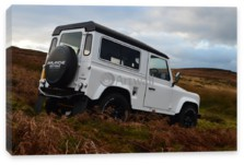 Defender 90, Land Rover Defender 90 (арт. am3391)
