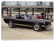 Shelby, Shelby GT350H '1966