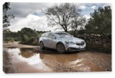 Insignia Country Tourer, Opel Insignia Country Tourer (арт. am3899)