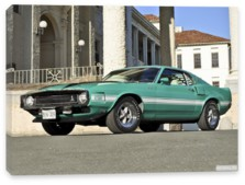 Shelby, Shelby GT500 '1969-70