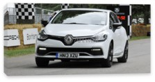 Clio RS, Renault Clio RS (арт. am4206)