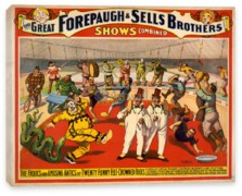 Цирк, The Adam Forepaugh & Sells Brothers, America's Greatest Shows Consolidated (3)