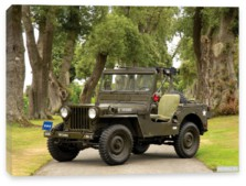 Willys, Willys M38 Jeep (MC) '1950-52