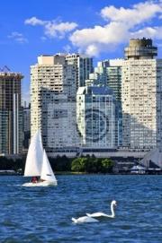 Постер Торонто Парусник, плывущий в гавани Торонто с живописной набережной видТоронто<br>Постер на холсте или бумаге. Любого нужного вам размера. В раме или без. Подвес в комплекте. Трехслойная надежная упаковка. Доставим в любую точку России. Вам осталось только повесить картину на стену!<br>