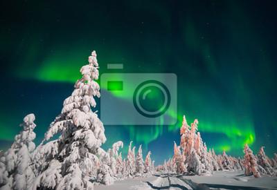 Постер Ночь Зимний пейзаж с лесом и Полярный свет над тайгой Ночь<br>Постер на холсте или бумаге. Любого нужного вам размера. В раме или без. Подвес в комплекте. Трехслойная надежная упаковка. Доставим в любую точку России. Вам осталось только повесить картину на стену!<br>