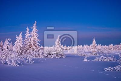 Постер Вечер Зимний пейзаж с леса, пасмурное небо и солнце Вечер<br>Постер на холсте или бумаге. Любого нужного вам размера. В раме или без. Подвес в комплекте. Трехслойная надежная упаковка. Доставим в любую точку России. Вам осталось только повесить картину на стену!<br>
