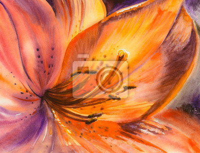 Постер Цветы в современной живописи Крупным планом оранжевый цветок лилии.Картины, созданные с помощью акварели.Цветы в современной живописи<br>Постер на холсте или бумаге. Любого нужного вам размера. В раме или без. Подвес в комплекте. Трехслойная надежная упаковка. Доставим в любую точку России. Вам осталось только повесить картину на стену!<br>