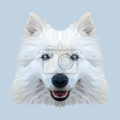 Постер-картина Полигональный арт Белый Самоедская собака низкополигональная дизайн животное. Треугольник векторные иллюстрации. Полигональный арт<br>Постер на холсте или бумаге. Любого нужного вам размера. В раме или без. Подвес в комплекте. Трехслойная надежная упаковка. Доставим в любую точку России. Вам осталось только повесить картину на стену!<br>