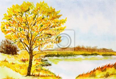 Постер Утро Акварельный пейзаж фон с осенних деревьев, озеро, кустыУтро<br>Постер на холсте или бумаге. Любого нужного вам размера. В раме или без. Подвес в комплекте. Трехслойная надежная упаковка. Доставим в любую точку России. Вам осталось только повесить картину на стену!<br>