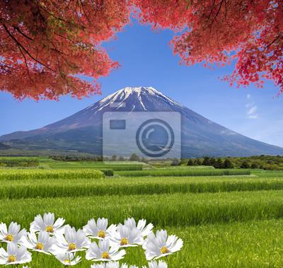 Постер Гора Фудзияма Волшебные пейзажи вид на горы летом с красивый цветГора Фудзияма<br>Постер на холсте или бумаге. Любого нужного вам размера. В раме или без. Подвес в комплекте. Трехслойная надежная упаковка. Доставим в любую точку России. Вам осталось только повесить картину на стену!<br>