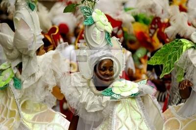 Personnage de carnaval, 30x20 см, на бумагеКарнавал в Рио-де-Жанейро<br>Постер на холсте или бумаге. Любого нужного вам размера. В раме или без. Подвес в комплекте. Трехслойная надежная упаковка. Доставим в любую точку России. Вам осталось только повесить картину на стену!<br>