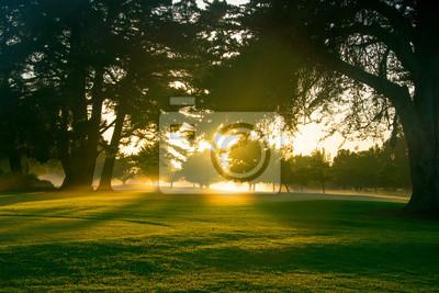 Постер Рассвет Поле для гольфа на рассвете с подсветкой по восходящего солнца..Рассвет<br>Постер на холсте или бумаге. Любого нужного вам размера. В раме или без. Подвес в комплекте. Трехслойная надежная упаковка. Доставим в любую точку России. Вам осталось только повесить картину на стену!<br>