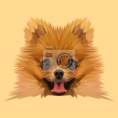 Постер-картина Полигональный арт Бу Померанский шпиц собака низкополигональная дизайн. Треугольник векторные иллюстрации.Полигональный арт<br>Постер на холсте или бумаге. Любого нужного вам размера. В раме или без. Подвес в комплекте. Трехслойная надежная упаковка. Доставим в любую точку России. Вам осталось только повесить картину на стену!<br>