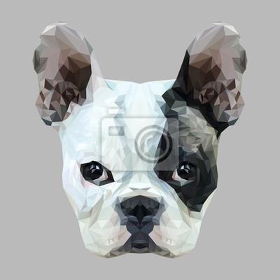 Постер-картина Полигональный арт Французский Бульдог собака животное низкополигональная дизайн. Треугольник векторные иллюстрации.Полигональный арт<br>Постер на холсте или бумаге. Любого нужного вам размера. В раме или без. Подвес в комплекте. Трехслойная надежная упаковка. Доставим в любую точку России. Вам осталось только повесить картину на стену!<br>
