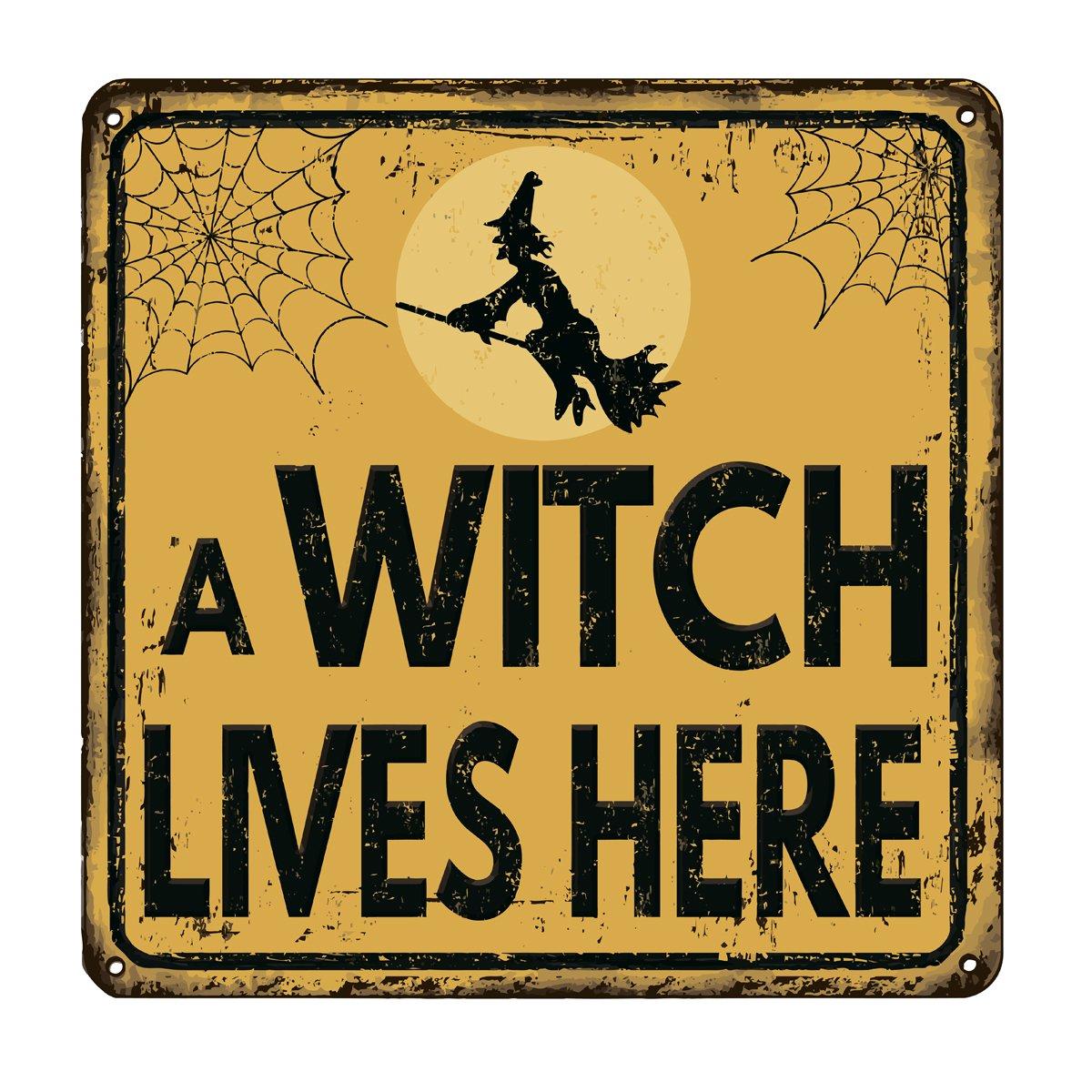 Постер-картина Фото-постеры Ведьма живет здесь старинные металлический знак, 20x20 см, на бумагеСмешные таблички<br>Постер на холсте или бумаге. Любого нужного вам размера. В раме или без. Подвес в комплекте. Трехслойная надежная упаковка. Доставим в любую точку России. Вам осталось только повесить картину на стену!<br>