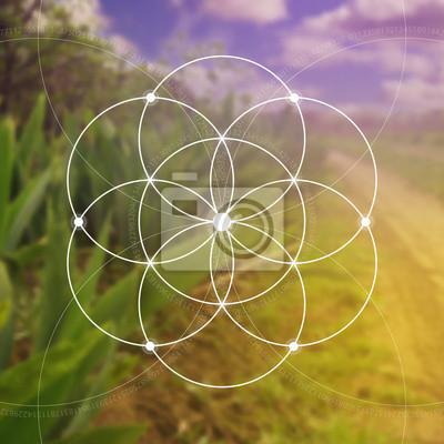 Постер-картина Фото-постеры Цветок жизни рисунок - переплетение кругов древний символ. Сакральная геометрия. Математики, природы и духовности в природе. Фибоначчи строки. Формула природы. Самопознание в, 20x20 см, на бумагеЗолотое сечение, числа Фибоначчи<br>Постер на холсте или бумаге. Любого нужного вам размера. В раме или без. Подвес в комплекте. Трехслойная надежная упаковка. Доставим в любую точку России. Вам осталось только повесить картину на стену!<br>
