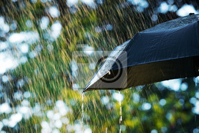 Постер Дождь Дождь, закройте зонтик в дождь с копией пространстваДождь<br>Постер на холсте или бумаге. Любого нужного вам размера. В раме или без. Подвес в комплекте. Трехслойная надежная упаковка. Доставим в любую точку России. Вам осталось только повесить картину на стену!<br>
