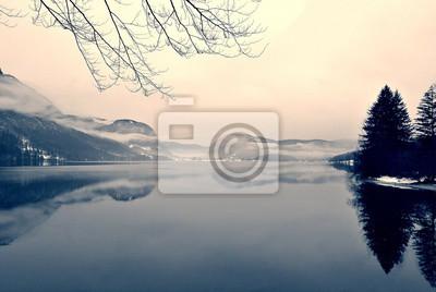 Постер Туман Заснеженный зимний пейзаж на озере в черно-белом. Монохромное изображение фильтруется в стиле ретро, винтажный стиль с Мягкий фокус, красный фильтр и какой-то шум; ностальгическая концепция зима. Озеро Бохинь, Словения.Туман<br>Постер на холсте или бумаге. Любого нужного вам размера. В раме или без. Подвес в комплекте. Трехслойная надежная упаковка. Доставим в любую точку России. Вам осталось только повесить картину на стену!<br>