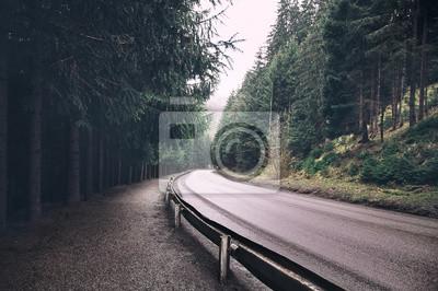 Постер Дождь Мокрой асфальтированной дороге через густой лес. старинные картиныДождь<br>Постер на холсте или бумаге. Любого нужного вам размера. В раме или без. Подвес в комплекте. Трехслойная надежная упаковка. Доставим в любую точку России. Вам осталось только повесить картину на стену!<br>