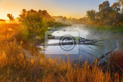 Постер Утро Прекрасным ранним утром на реке. Теплый солнечный свет, озаряя берег, желтая трава, туман над водой, начала осени. Нежные цвета рассвета, размытый, нежный образ, все в дымке. Утро<br>Постер на холсте или бумаге. Любого нужного вам размера. В раме или без. Подвес в комплекте. Трехслойная надежная упаковка. Доставим в любую точку России. Вам осталось только повесить картину на стену!<br>