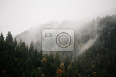 Постер Природа Лес с туман над горами, 30x20 см, на бумагеТуман<br>Постер на холсте или бумаге. Любого нужного вам размера. В раме или без. Подвес в комплекте. Трехслойная надежная упаковка. Доставим в любую точку России. Вам осталось только повесить картину на стену!<br>