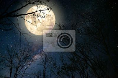 Постер Ночь Красивая Млечный путь звезда в ночном небе, полная луна и старое дерево в стиле ретро фэнтези искусства с ретро цветовой тон.Ночь<br>Постер на холсте или бумаге. Любого нужного вам размера. В раме или без. Подвес в комплекте. Трехслойная надежная упаковка. Доставим в любую точку России. Вам осталось только повесить картину на стену!<br>