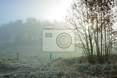 Постер Утро Туманный осенний утренний пейзажУтро<br>Постер на холсте или бумаге. Любого нужного вам размера. В раме или без. Подвес в комплекте. Трехслойная надежная упаковка. Доставим в любую точку России. Вам осталось только повесить картину на стену!<br>