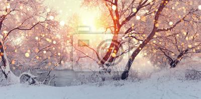 Постер Утро Солнечное Рождественское утро. Солнца освещают снежинки.Утро<br>Постер на холсте или бумаге. Любого нужного вам размера. В раме или без. Подвес в комплекте. Трехслойная надежная упаковка. Доставим в любую точку России. Вам осталось только повесить картину на стену!<br>