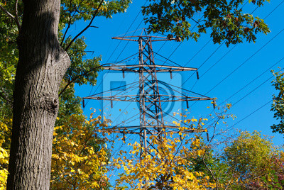 Постер Промышленность Линии электропередач в природе, пост высокого напряжения или высокого напряжения башни в красивый осенний лес, ЛЭП в красивом пологом леса., 30x20 см, на бумагеЛинии электропередач<br>Постер на холсте или бумаге. Любого нужного вам размера. В раме или без. Подвес в комплекте. Трехслойная надежная упаковка. Доставим в любую точку России. Вам осталось только повесить картину на стену!<br>