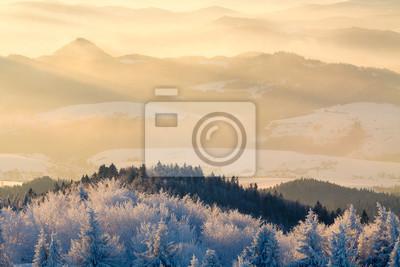 Постер Утро Горная долина панорама во время восхода солнца. Красивые природные панорамный пейзаж в зимнее время.Утро<br>Постер на холсте или бумаге. Любого нужного вам размера. В раме или без. Подвес в комплекте. Трехслойная надежная упаковка. Доставим в любую точку России. Вам осталось только повесить картину на стену!<br>