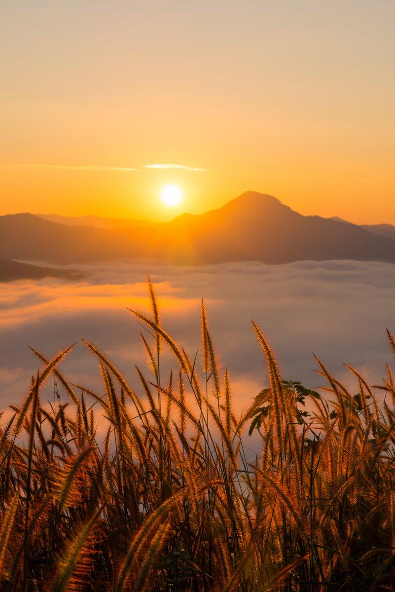 Постер Утро Красивый восход солнца с туманом в утро в горы пху-токУтро<br>Постер на холсте или бумаге. Любого нужного вам размера. В раме или без. Подвес в комплекте. Трехслойная надежная упаковка. Доставим в любую точку России. Вам осталось только повесить картину на стену!<br>