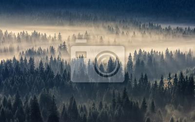 Постер Туман Хвойный лес в туманной горыТуман<br>Постер на холсте или бумаге. Любого нужного вам размера. В раме или без. Подвес в комплекте. Трехслойная надежная упаковка. Доставим в любую точку России. Вам осталось только повесить картину на стену!<br>