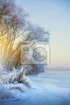 Постер Утро Красивый зимний фон, зимний пейзаж с инеемУтро<br>Постер на холсте или бумаге. Любого нужного вам размера. В раме или без. Подвес в комплекте. Трехслойная надежная упаковка. Доставим в любую точку России. Вам осталось только повесить картину на стену!<br>