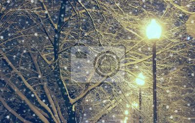 Постер Ночь Ночной пейзаж в зимнем парке.Ночь<br>Постер на холсте или бумаге. Любого нужного вам размера. В раме или без. Подвес в комплекте. Трехслойная надежная упаковка. Доставим в любую точку России. Вам осталось только повесить картину на стену!<br>